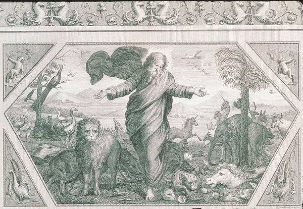 Genesis Photograph - Engraving Of God Creating The Plants And Animals by George Bernard/science Photo Library