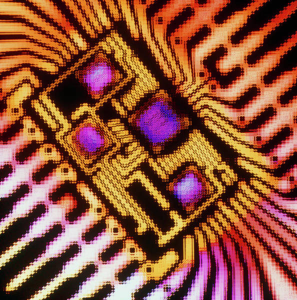 Wall Art - Photograph - Enhanced Macrophoto Of A Hybrid Integrated Circuit by Alfred Pasieka/science Photo Library