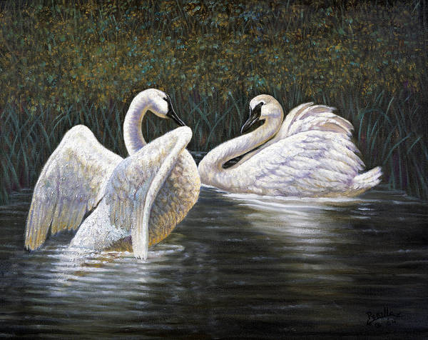 Trumpeter Swan Painting - Enjoying The Trumpeter Swans by Gregory Perillo