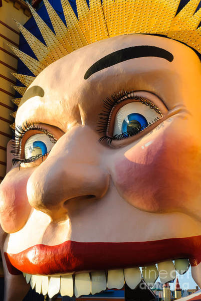 Photograph - Enormous Smiling Face by David Hill