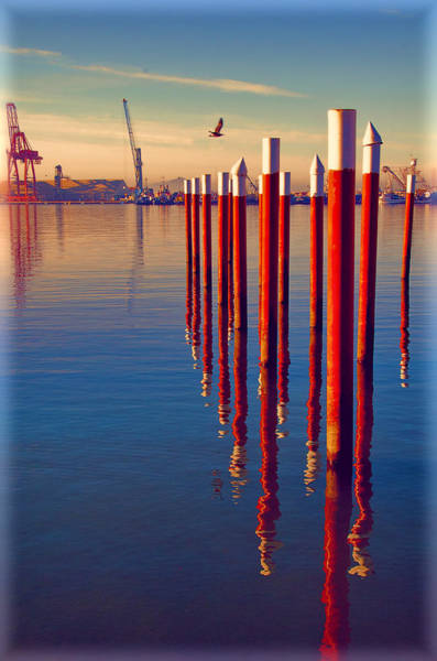 Ensenada Photograph - Ensenada Harbor by Claude LeTien