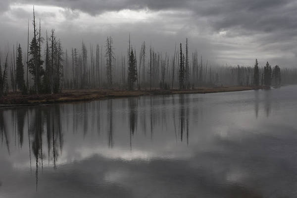 Photograph - Enshrouded By Fog by Wes and Dotty Weber