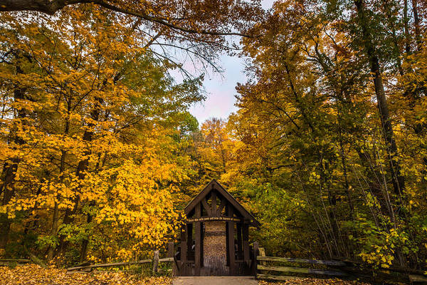 Photograph - Enter This Wild Wood And View The Haunts Of Nature by Randy Scherkenbach