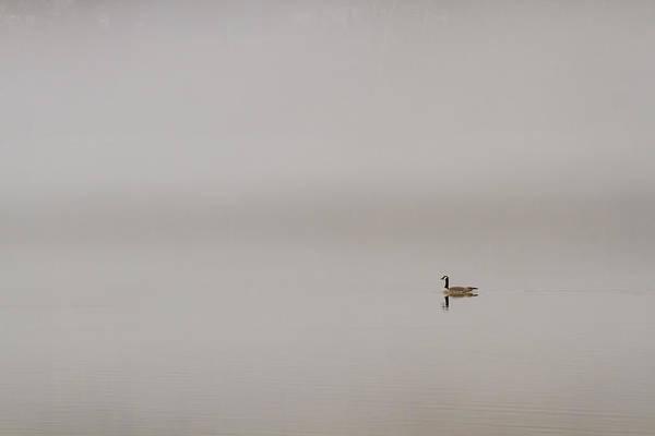 Photograph - Entering A Dream by Scott Bean
