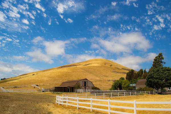 Photograph - Entering The Napa Valley by Rima Biswas