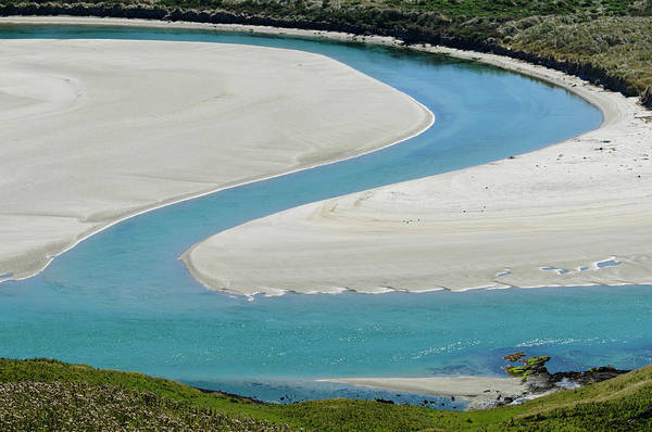 Entrance Photograph - Entrance To Papanui Inlet, Otago by Grant Dixon