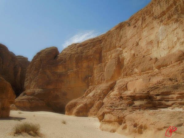 Photograph - Entrance To White Canyon Path  Sinai Desert Egypt by Colette V Hera  Guggenheim