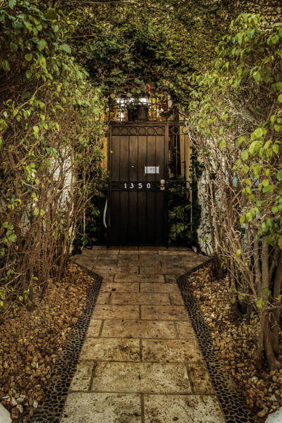 Photograph - Entry To 1350 by Melinda Ledsome