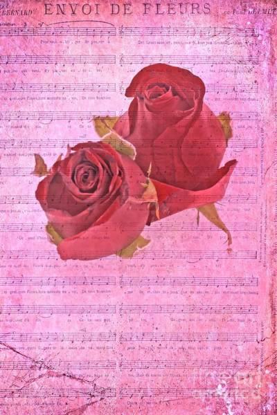 Photograph - Envoi De Fleurs Roses by David Birchall