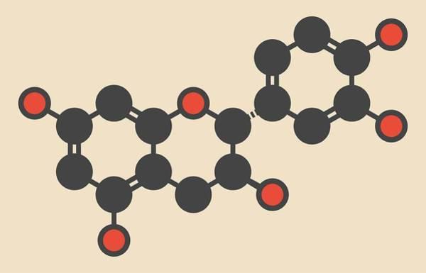 Wall Art - Photograph - Epicatechin Molecule by Molekuul
