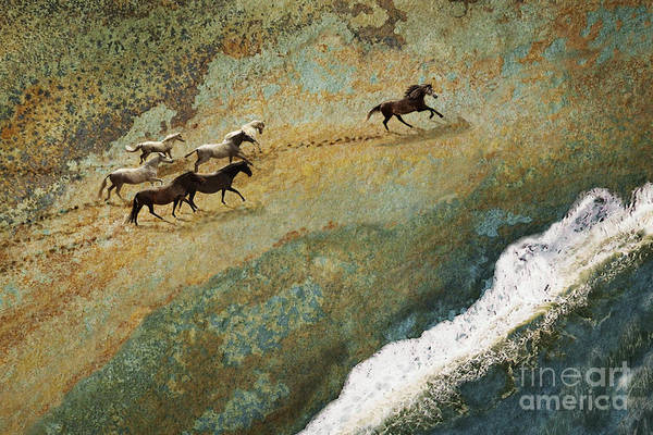 Equine Seascape Art Print