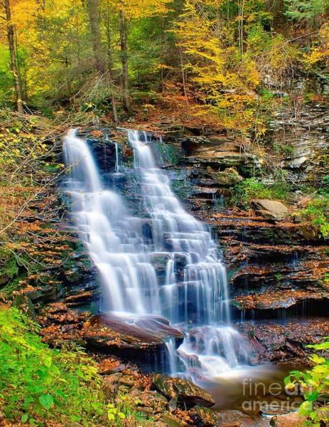 Photograph - Erie Falls by Nick Zelinsky