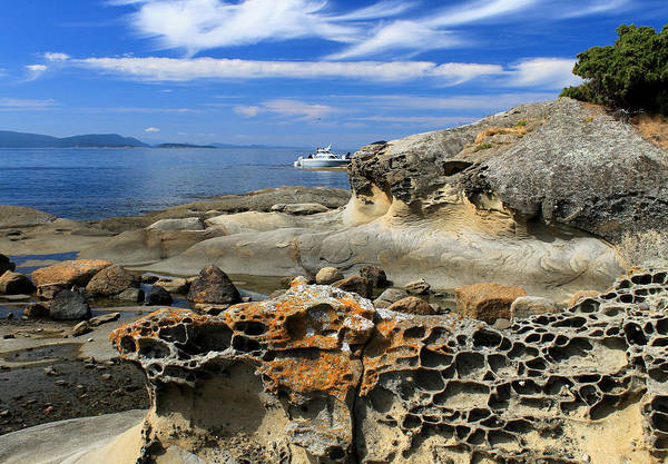 Wall Art - Photograph - Erosion, San Juan Islands by Nancy Sefton