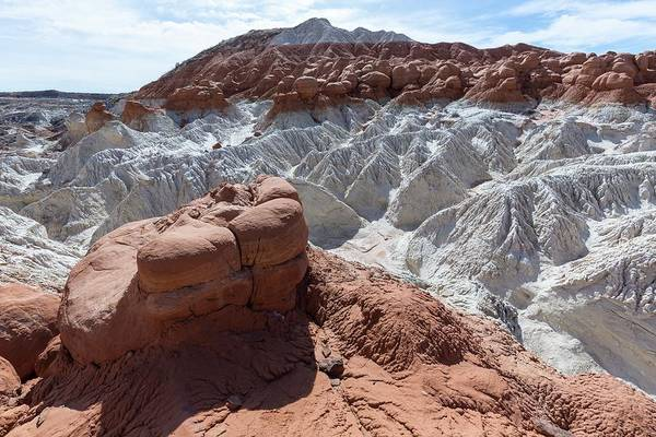 Paria Canyon Photograph - Erosional Features In Shale by Dr Juerg Alean/science Photo Library