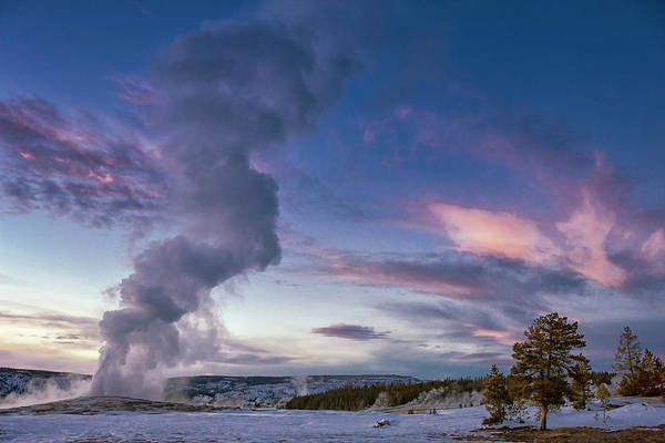 Wall Art - Photograph - Eruption Of Old Faithful Geyser by Tom Norring