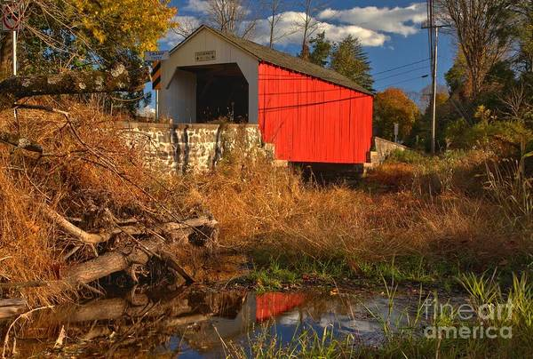 Photograph - Erwinna Covered Bridge Reflections by Adam Jewell