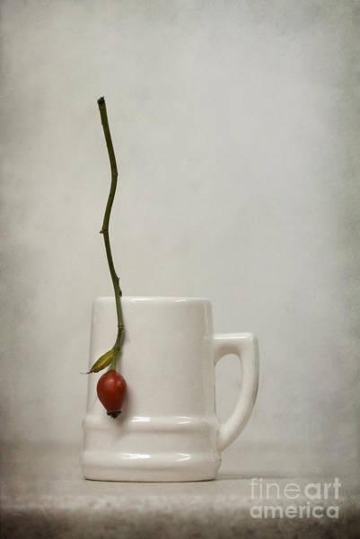 Wall Art - Photograph - Escape by Diana Kraleva