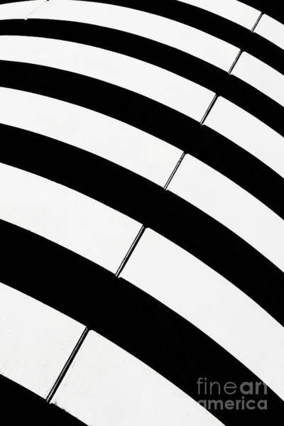 Wall Art - Photograph - Black And White Stripes by Rod McLean