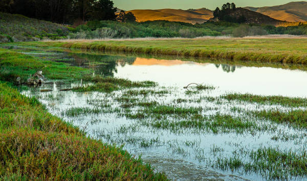 Photograph - Estuary Reflections....  Morro Bay by Tim Bryan