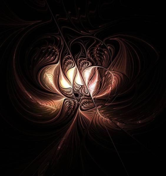 Digital Art - Etched Bloom by Amanda Moore