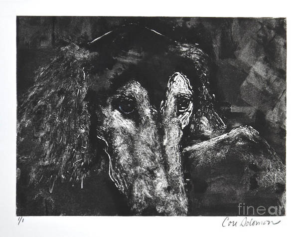 Sighthound Mixed Media - Etched In Time by Cori Solomon