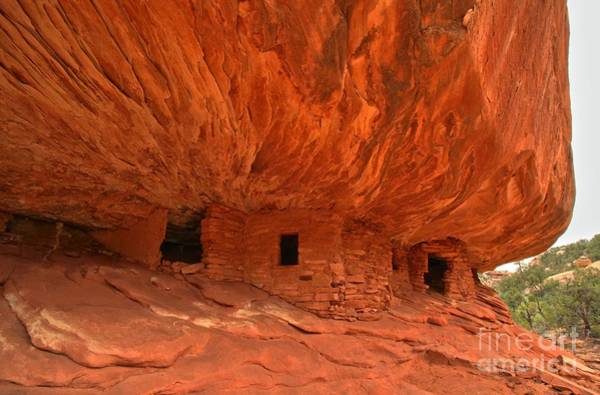 Photograph - Eternal Sandstone Flames by Adam Jewell