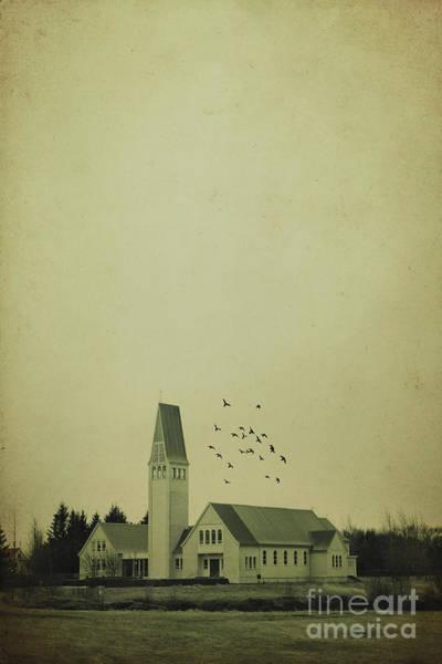 Country House Photograph - Eternal Struggle by Evelina Kremsdorf