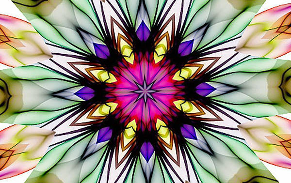 Digital Art - Ethereal Colors Mandala by Barbara A Lane