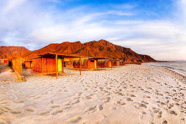 Photograph - Ethereal Morning On A Red Sea Beach by Mark Tisdale