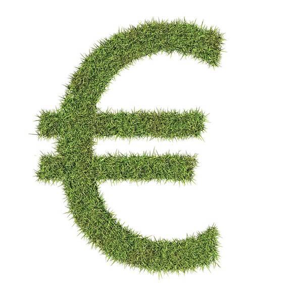 Environmental Issue Wall Art - Photograph - Euro Symbol by Geoff Kidd