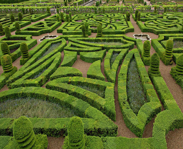 Villandry Photograph - Europe, France, Loire Valley by Charles Sleicher