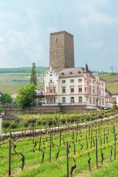 Hessen Photograph - Europe, Germany, Hessen, Rudesheim by Jim Engelbrecht