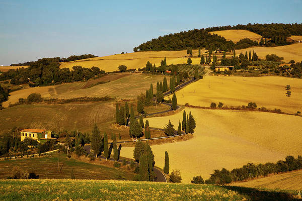 Back Road Photograph - Europe, Italy, Tuscany, Zig Zag Road by Terry Eggers