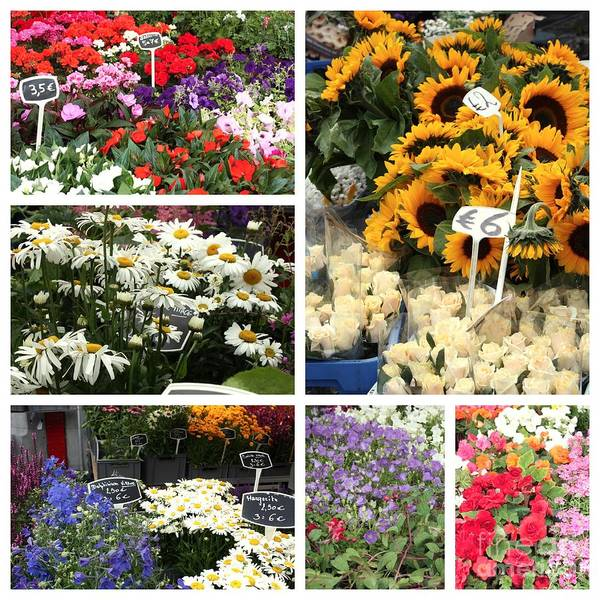 Photograph - European Flower Market Collage by Carol Groenen