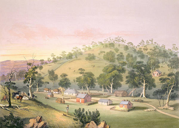 Rural Drawing - Evening At Angaston, South Australia by George French Angas