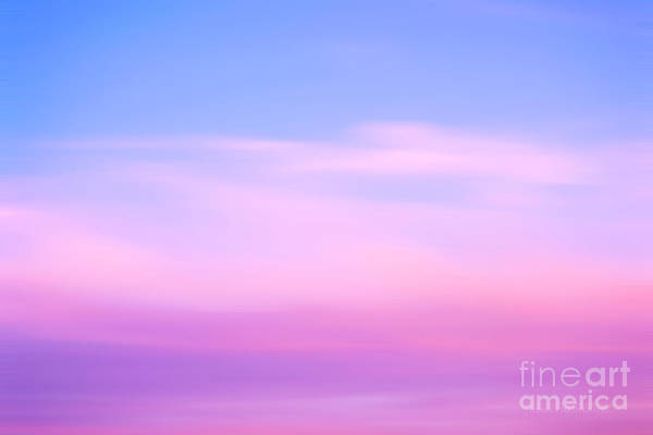 Photograph - Evening Bliss by Rima Biswas