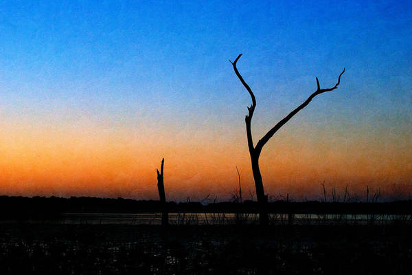 Photograph - Evening Glow by Beverly Stapleton