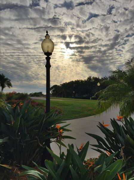 Photograph - Evening In Venice Fl by Pat Moore