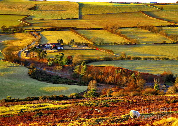 Photograph - Evening Landscape In County Durham by Martyn Arnold