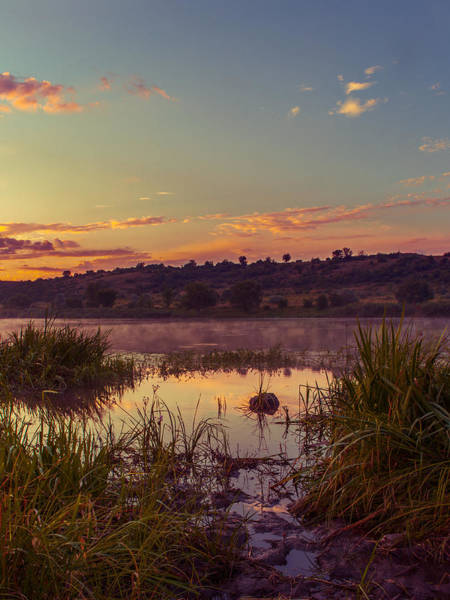 Photograph - Evening On The Quiet River by Dmytro Korol