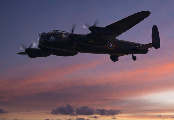 Photograph - Evening Raider by Andy Myatt