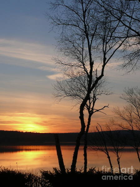 Madawaska Lake Photograph - Evening Sky by Brenda Ketch