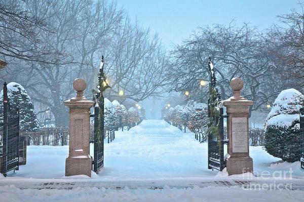 Wall Art - Photograph - Evening Snow On Haffenreffer Walk by Susan Cole Kelly