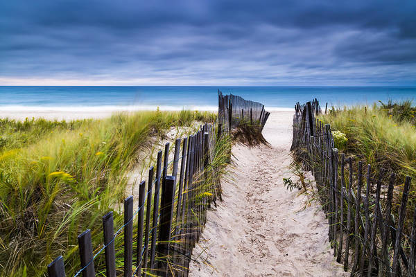 Pathway Photograph - Flying Point Beach Vista by Ryan Moore