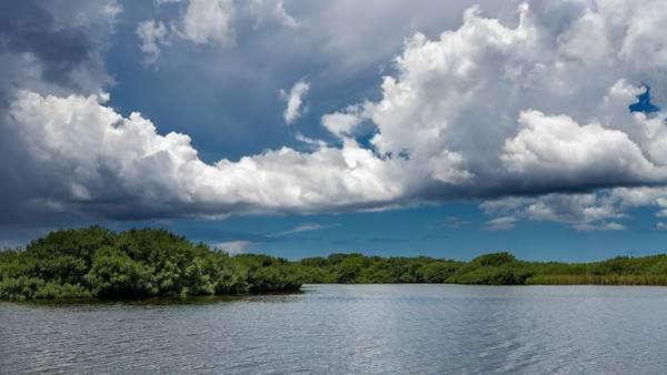 Photograph - Everglades 0254 by Rudy Umans