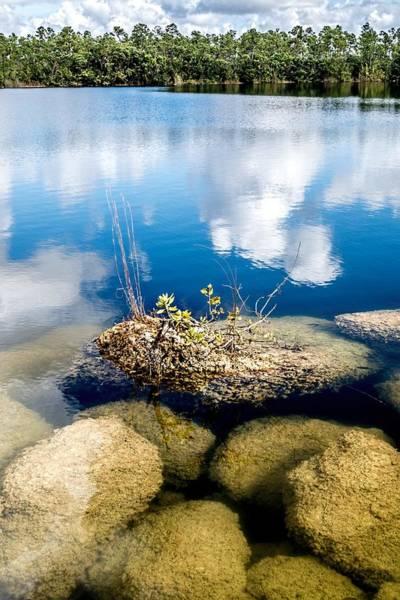 Photograph - Everglades 0343 by Rudy Umans