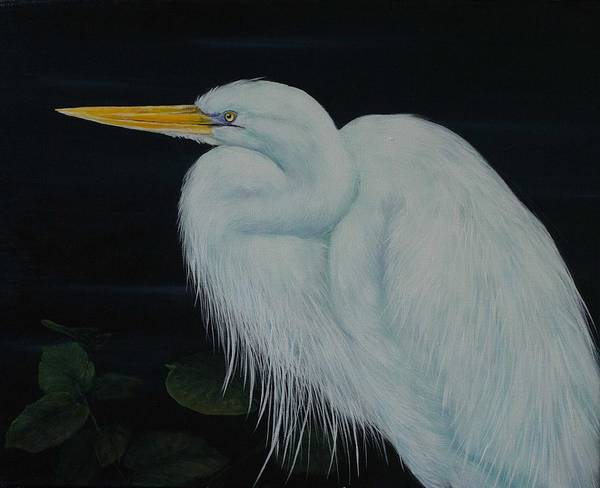 Painting - Everglades Angel by Nancy Lauby