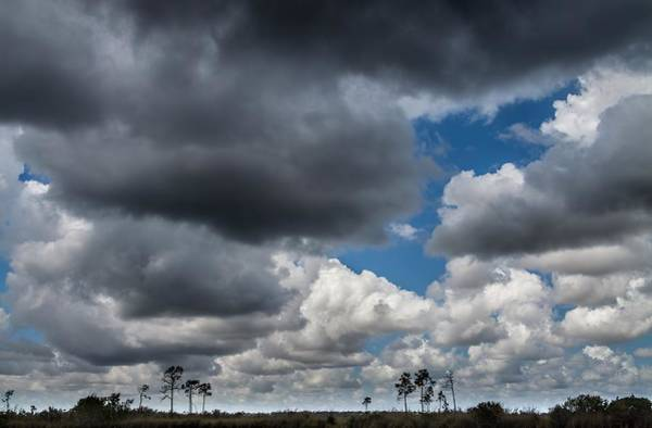 Photograph - Everglades Clouds 6873 by Rudy Umans