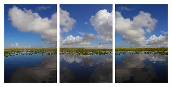 Photograph - Everglades Clouds by Alice Gipson