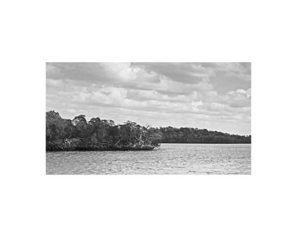 Photograph - Everglades Glswat163 by G L Sarti